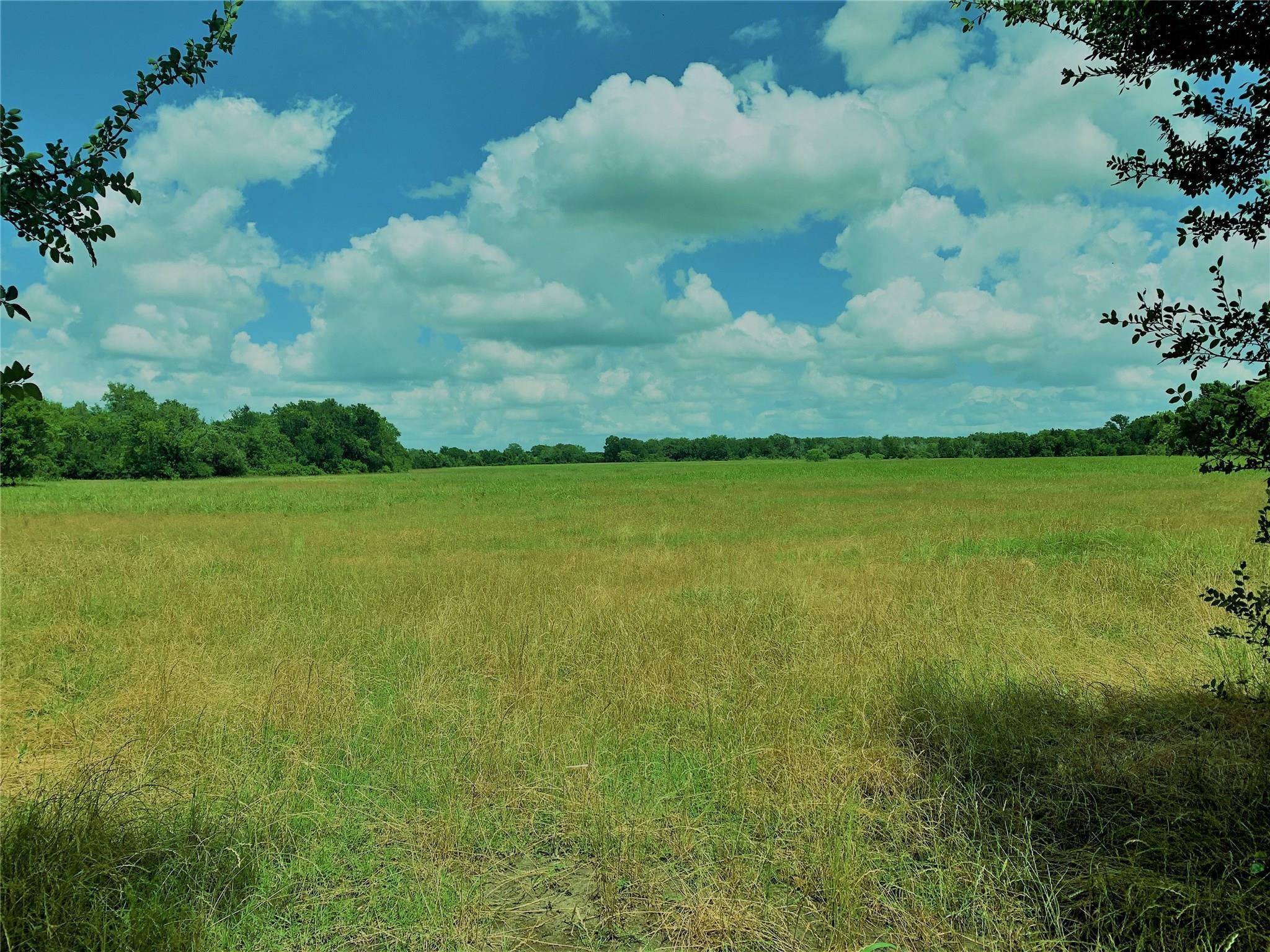 TBD County Rd 402 Property Photo - Flatonia, TX real estate listing