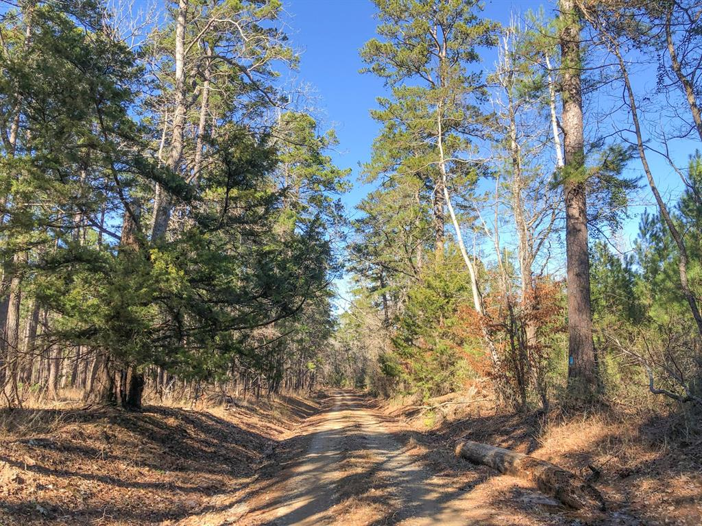 0 USFS Rd 513, Kennard, TX 75847 - Kennard, TX real estate listing