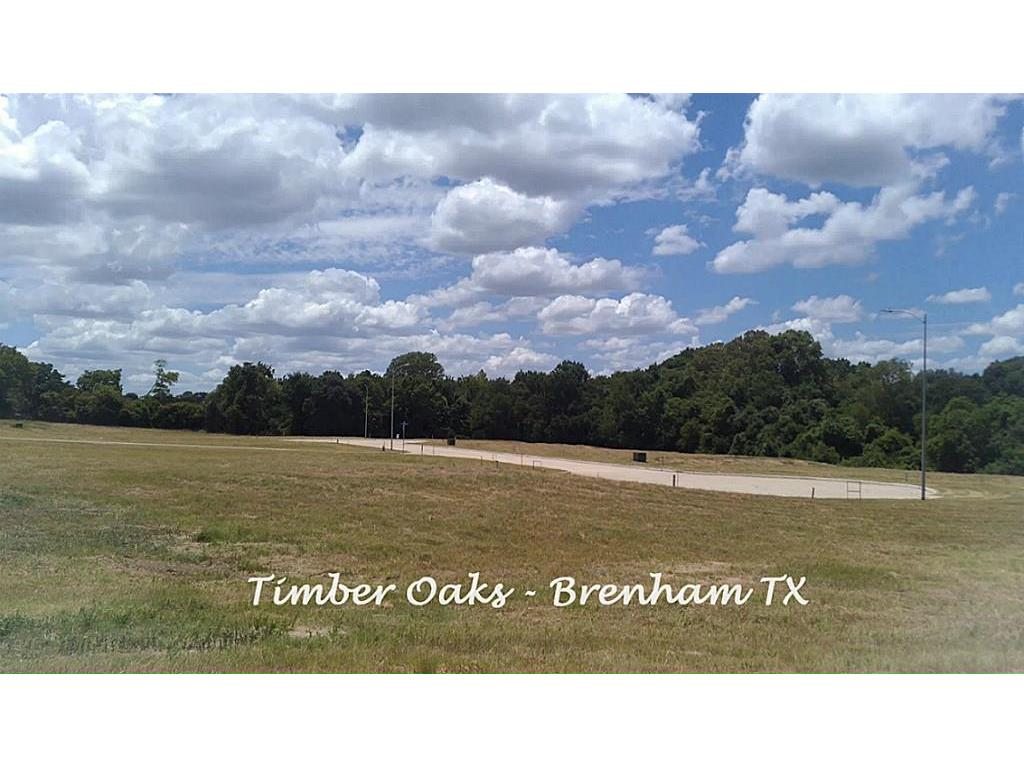 1501 Timber Oaks Property Photo - Brenham, TX real estate listing
