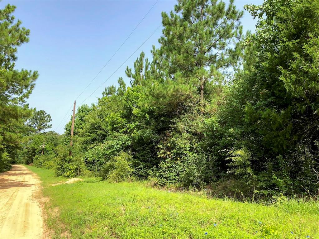 000 CR 1700, Newton, TX 75966 - Newton, TX real estate listing