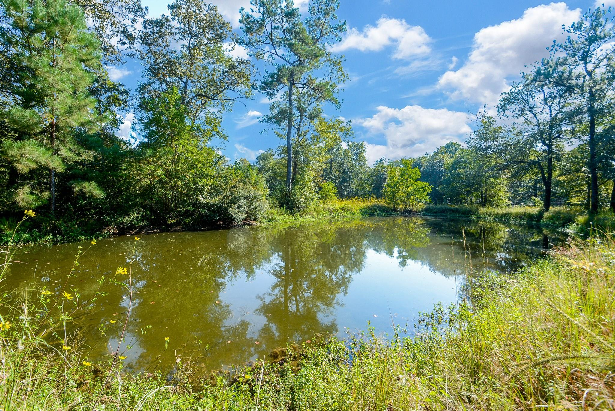 13383 Tommy Smith Road Property Photo - Conroe, TX real estate listing