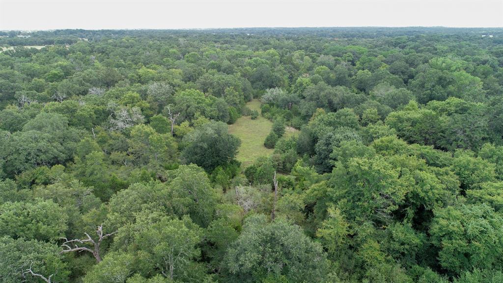 TBD FM 60, Somerville, TX 77879 - Somerville, TX real estate listing