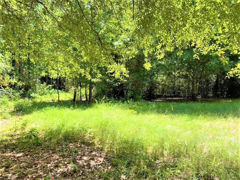 866 Private Road 6221 Property Photo - Jasper, TX real estate listing