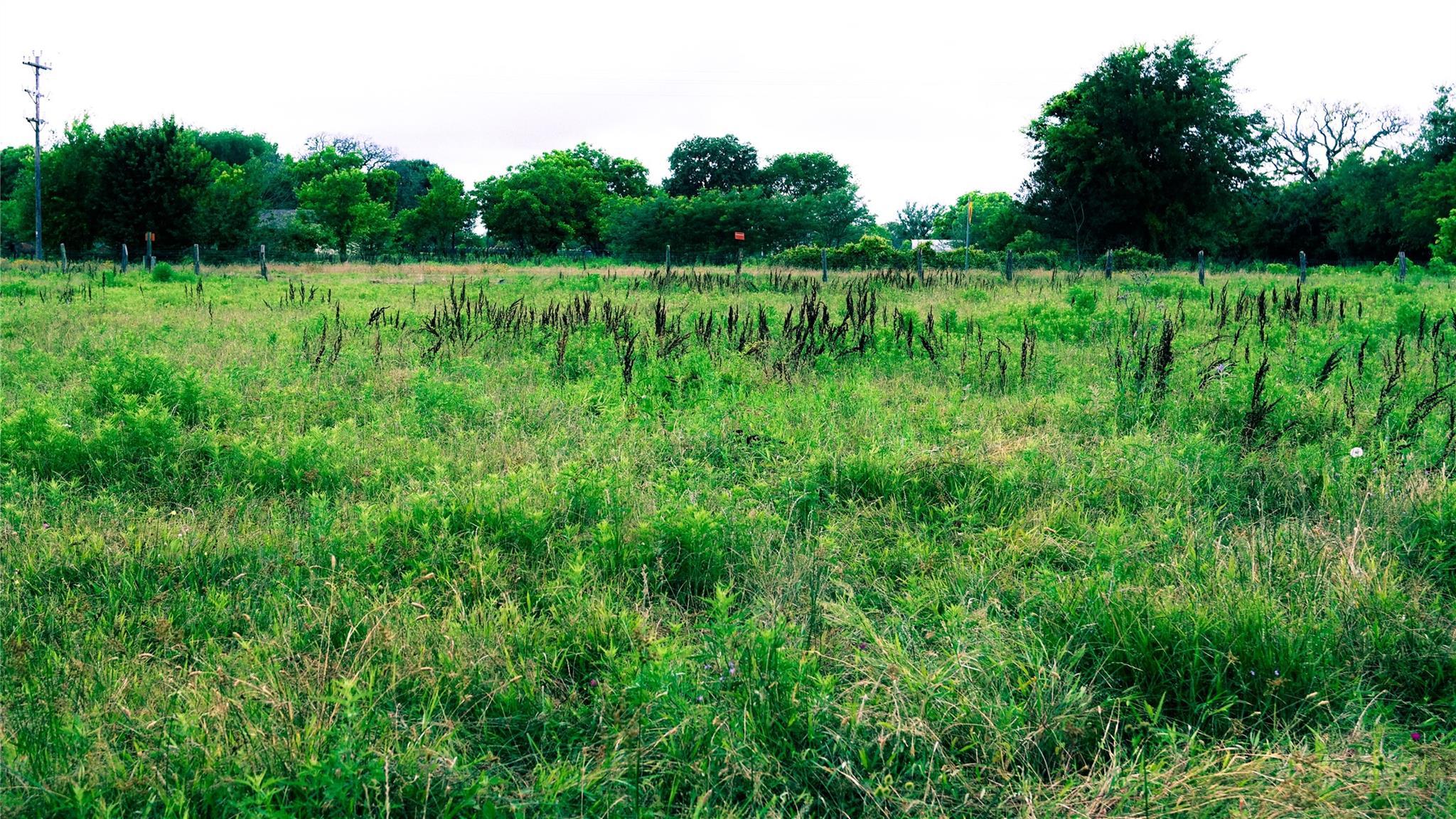 Tbd S Fm 80 Property Photo