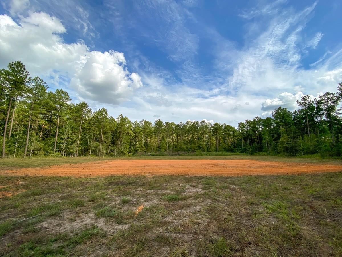 668 Wheeler Road Property Photo - Corrigan, TX real estate listing