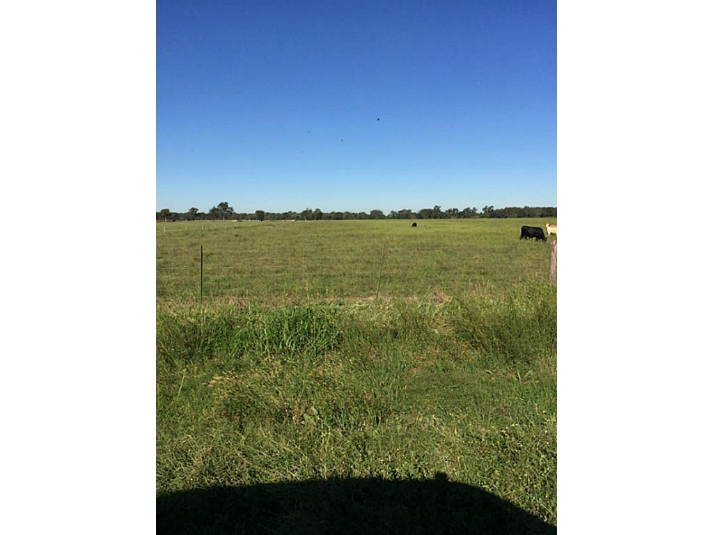 0000 FM 2817, Boling, TX 77420 - Boling, TX real estate listing