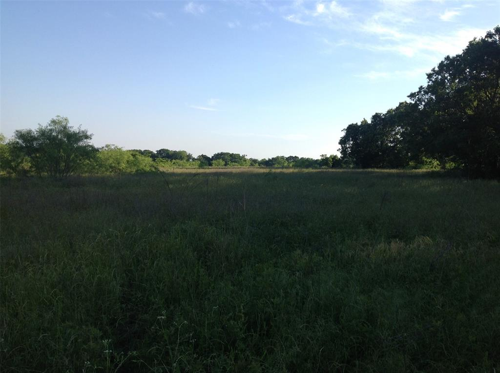 00 Hwy 7 Property Photo - Kosse, TX real estate listing