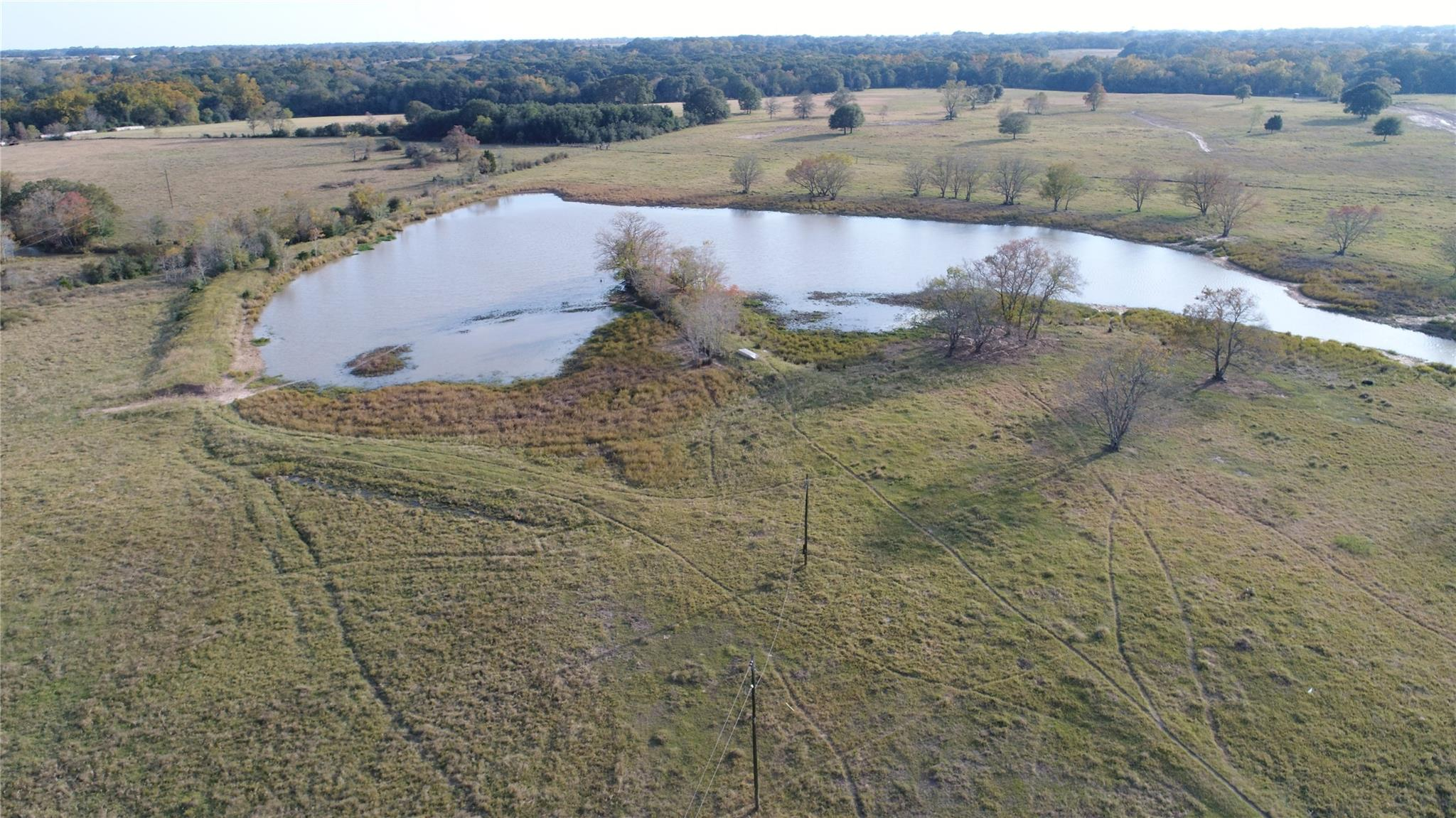 1245 Lisa Mae Road Property Photo - Bellville, TX real estate listing