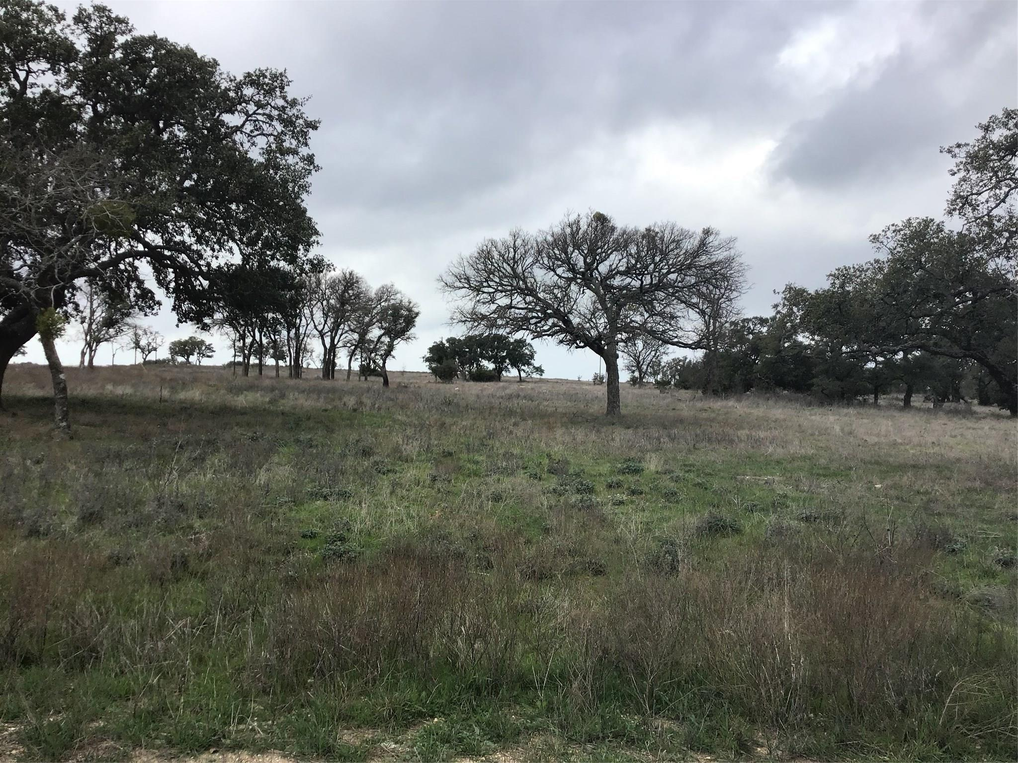 Lot 136 Red Stag Court Property Photo - Burnet, TX real estate listing