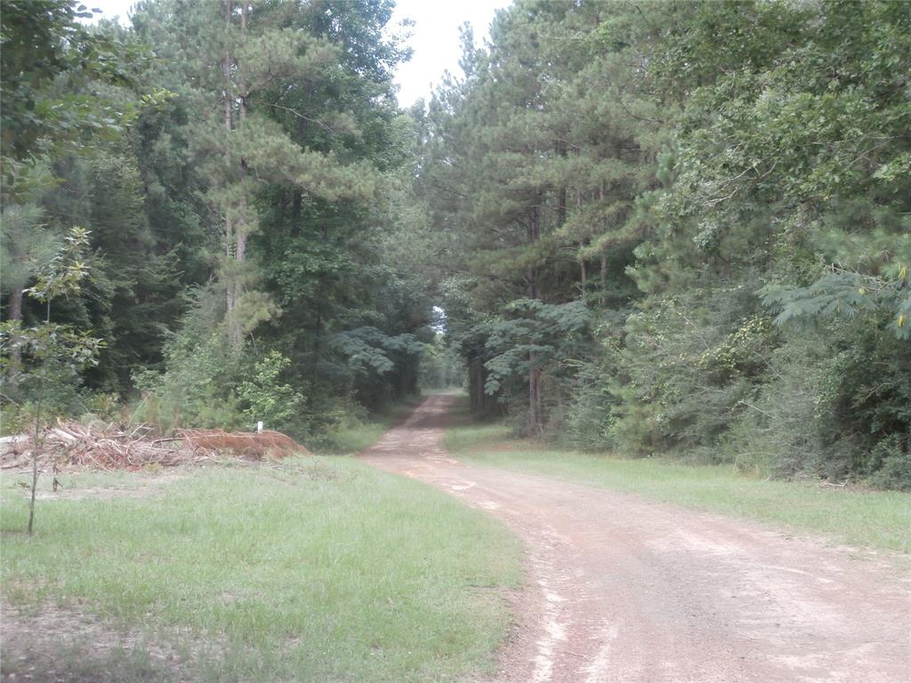 448 County Road 467 Property Photo - Kirbyville, TX real estate listing