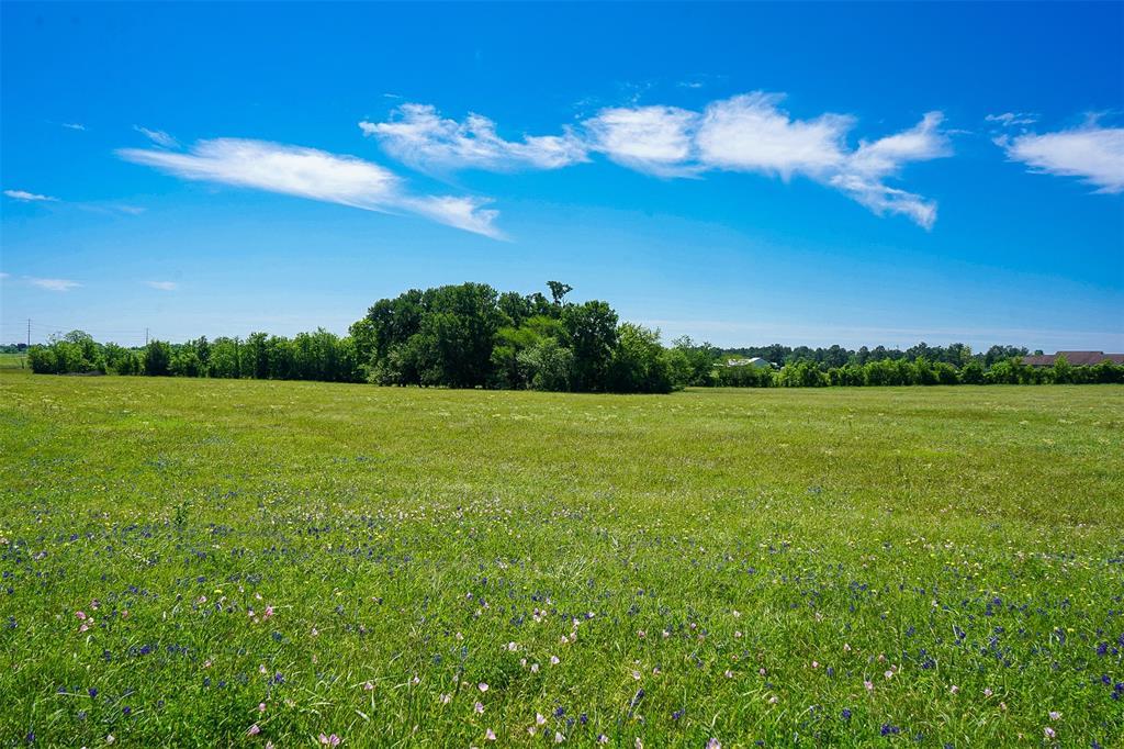 5 Anderson Ridge Lane, Anderson, TX 77830 - Anderson, TX real estate listing