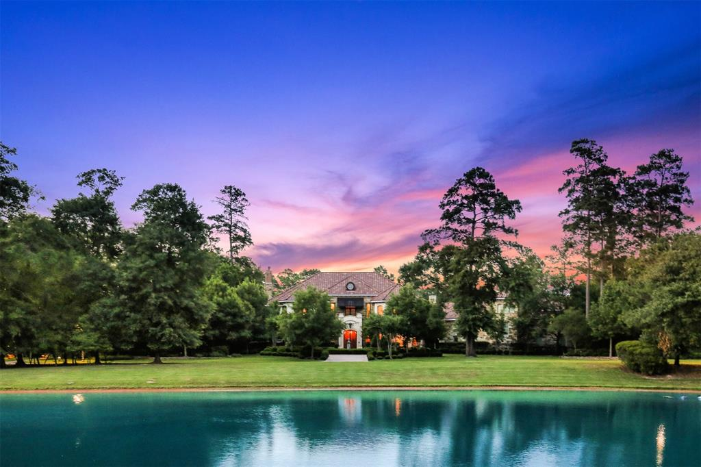 6 Electra Circle Property Photo - The Woodlands, TX real estate listing