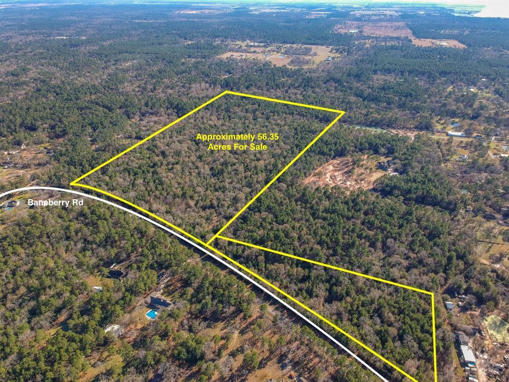 24102 BANEBERRY ROAD Property Photo - Magnolia, TX real estate listing