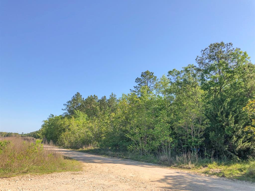 000000 N Of Hwy 90, Devers, TX 77535 - Devers, TX real estate listing