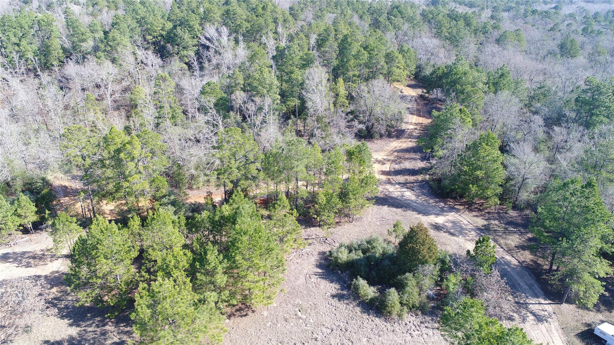 256AC CR 212 Property Photo - Buffalo, TX real estate listing