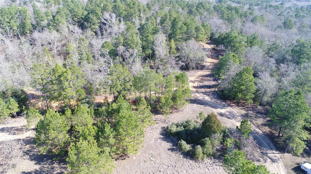 250AC CR 212, Buffalo, TX 75831 - Buffalo, TX real estate listing