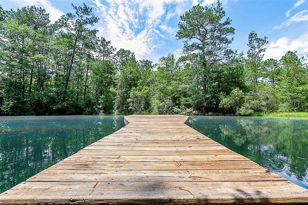 245 Creekwood Property Photo - Lumberton, TX real estate listing