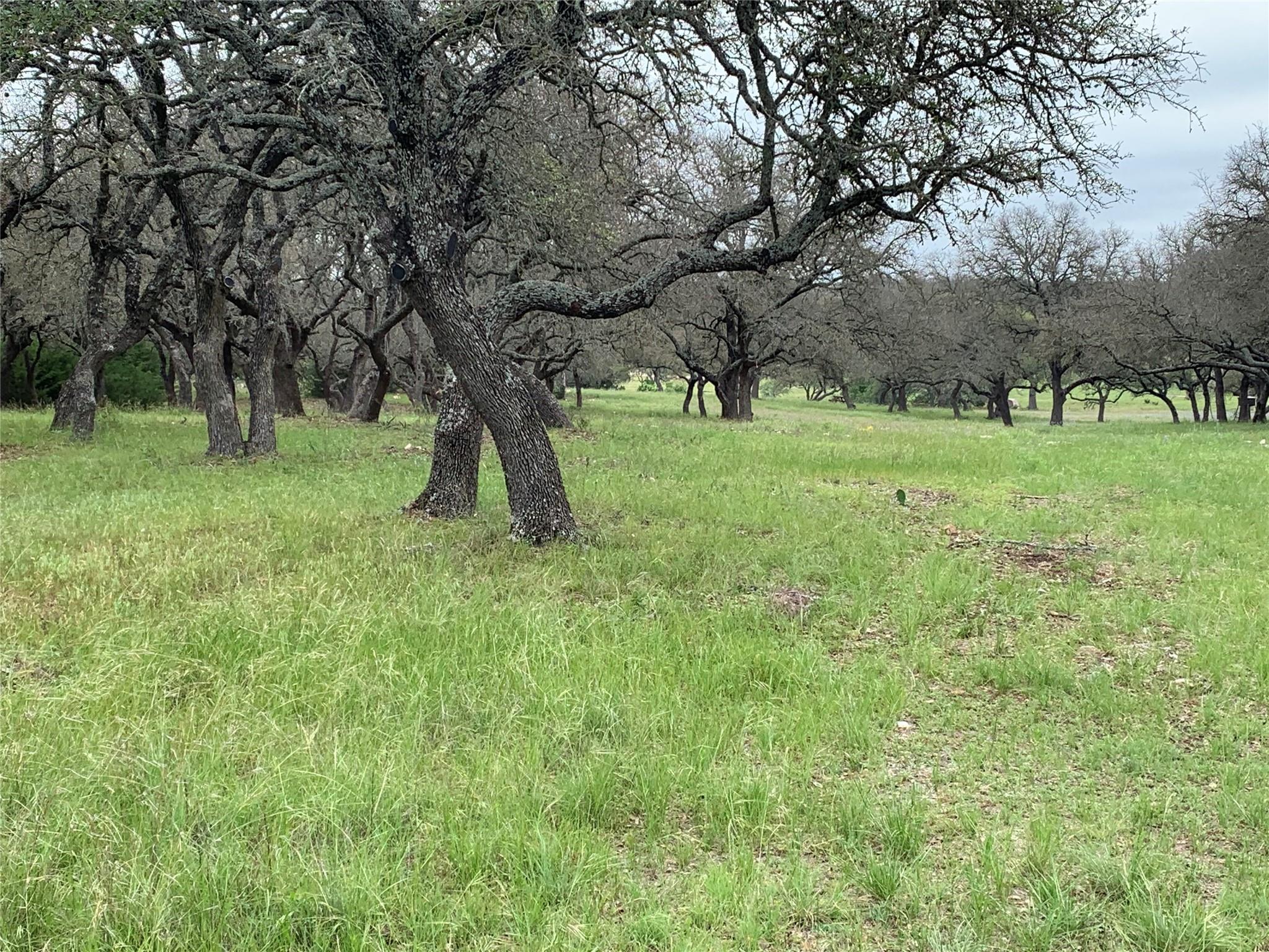 131 Springbok Trail Property Photo