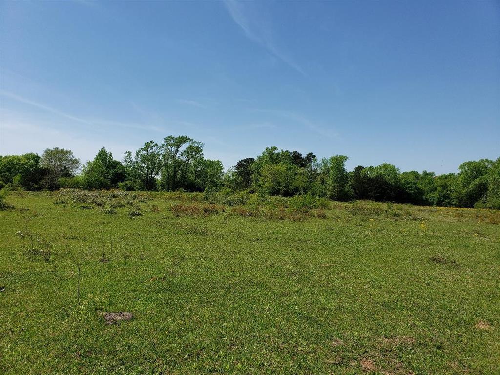 1 Hwy 7 Highway, Crockett, TX 75835 - Crockett, TX real estate listing