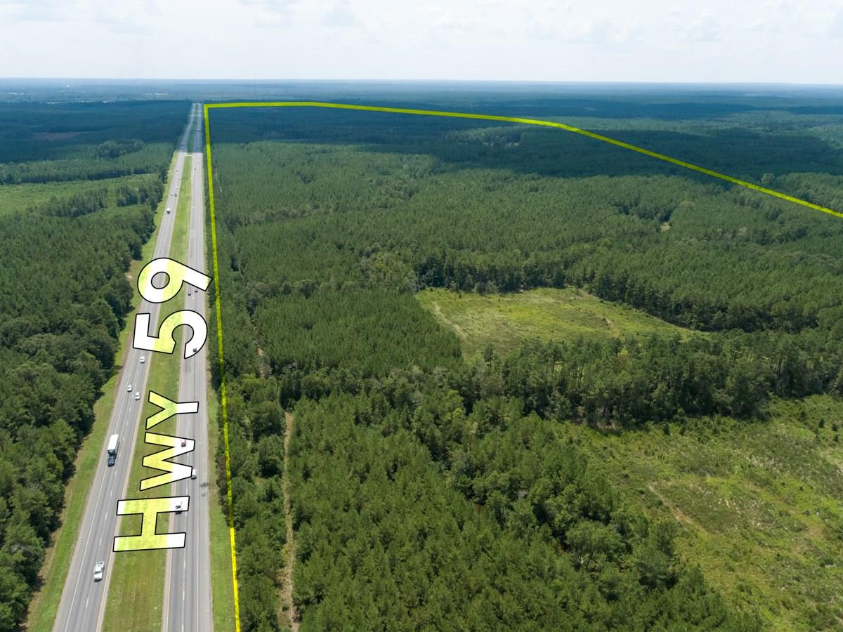 00 US Hwy 59 Bend Property Photo - Corrigan, TX real estate listing