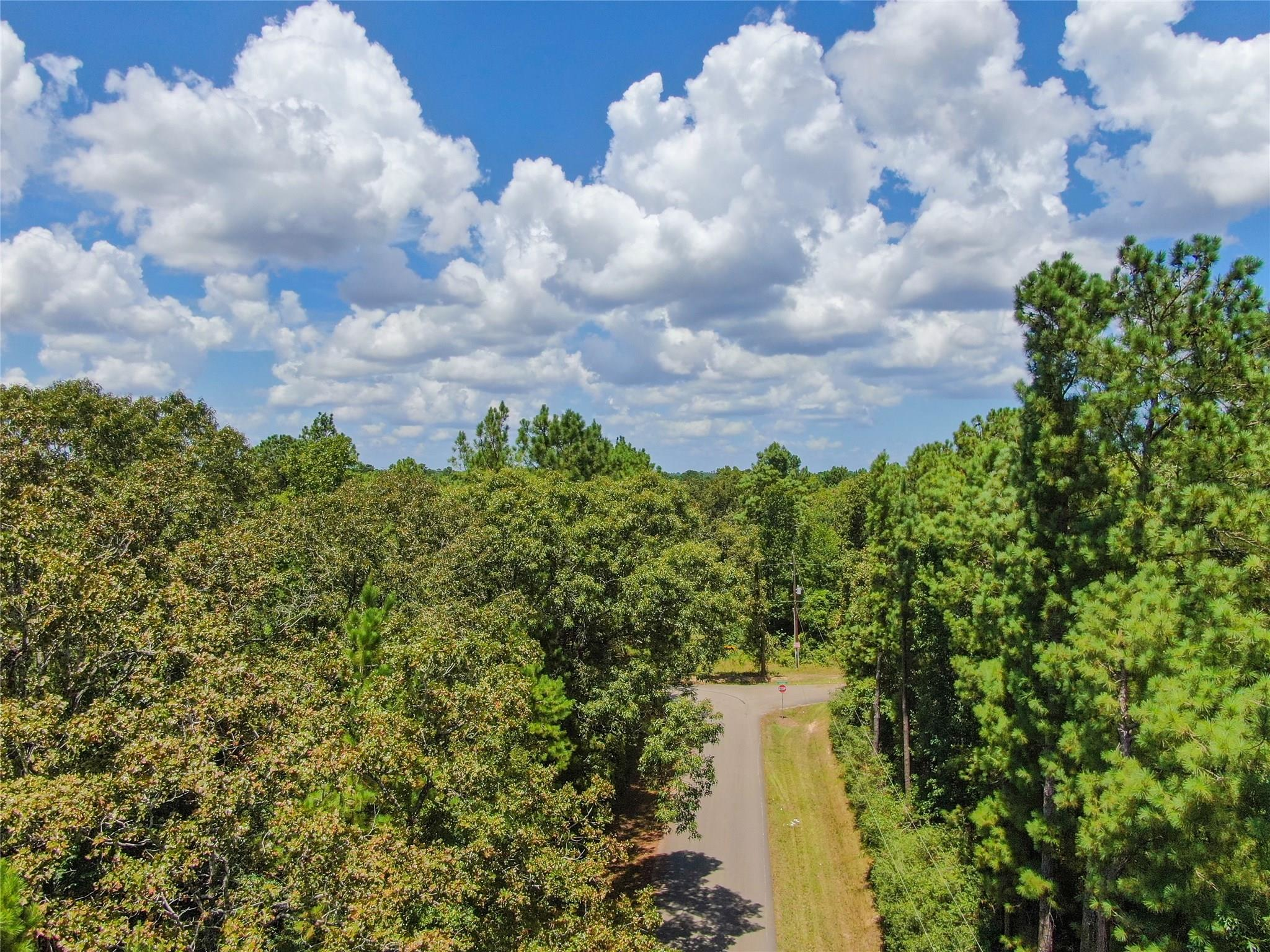 0 Corolla Road Property Photo - Magnolia, TX real estate listing