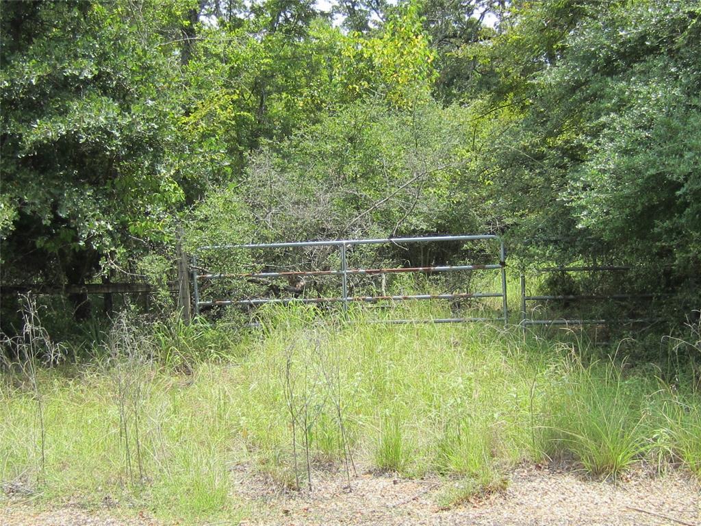 Lot 16 Post Oak Loop Property Photo - Thornton, TX real estate listing