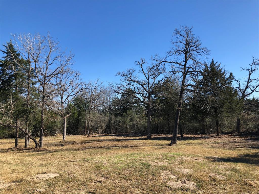 590 Oak Forest Drive, Snook, TX 77878 - Snook, TX real estate listing