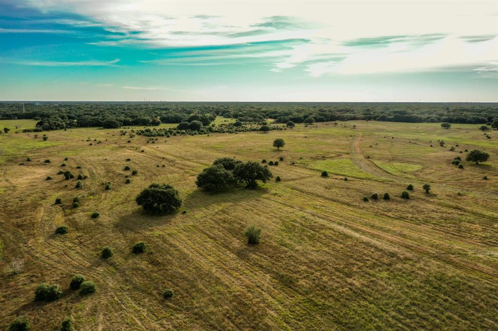 0 County Road 106 Property Photo - Rock Island, TX real estate listing