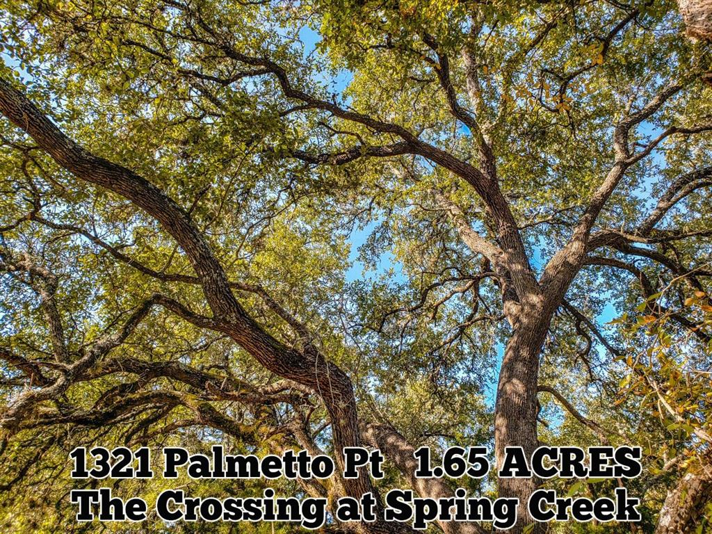 1321 Palmetto Point Property Photo - Spring Branch, TX real estate listing