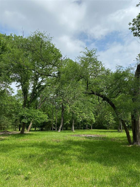 16110 Singletree Drive Property Photo - Stagecoach, TX real estate listing