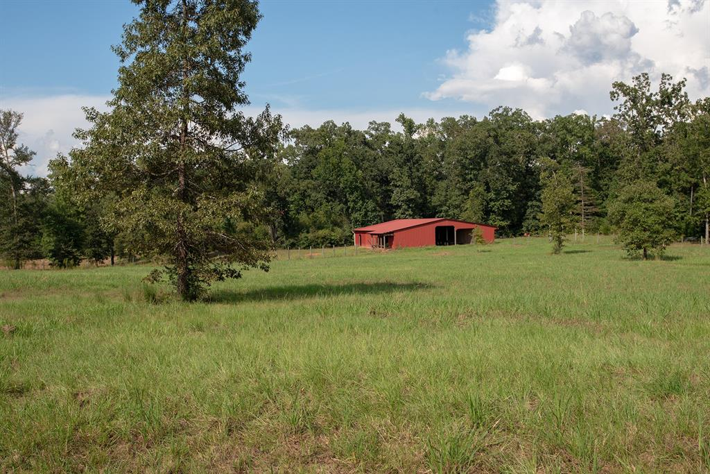 00 County Road 3240, Colmesneil, TX 75938 - Colmesneil, TX real estate listing