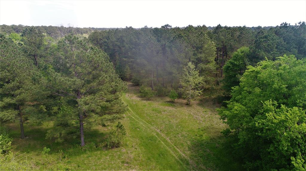 1028 N Possum Walk Road, Groveton, TX 75862 - Groveton, TX real estate listing