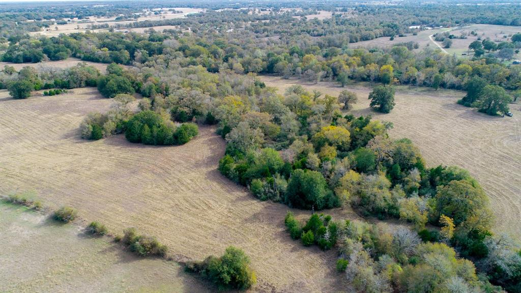 3650 County Road 118, Giddings, TX 78942 - Giddings, TX real estate listing