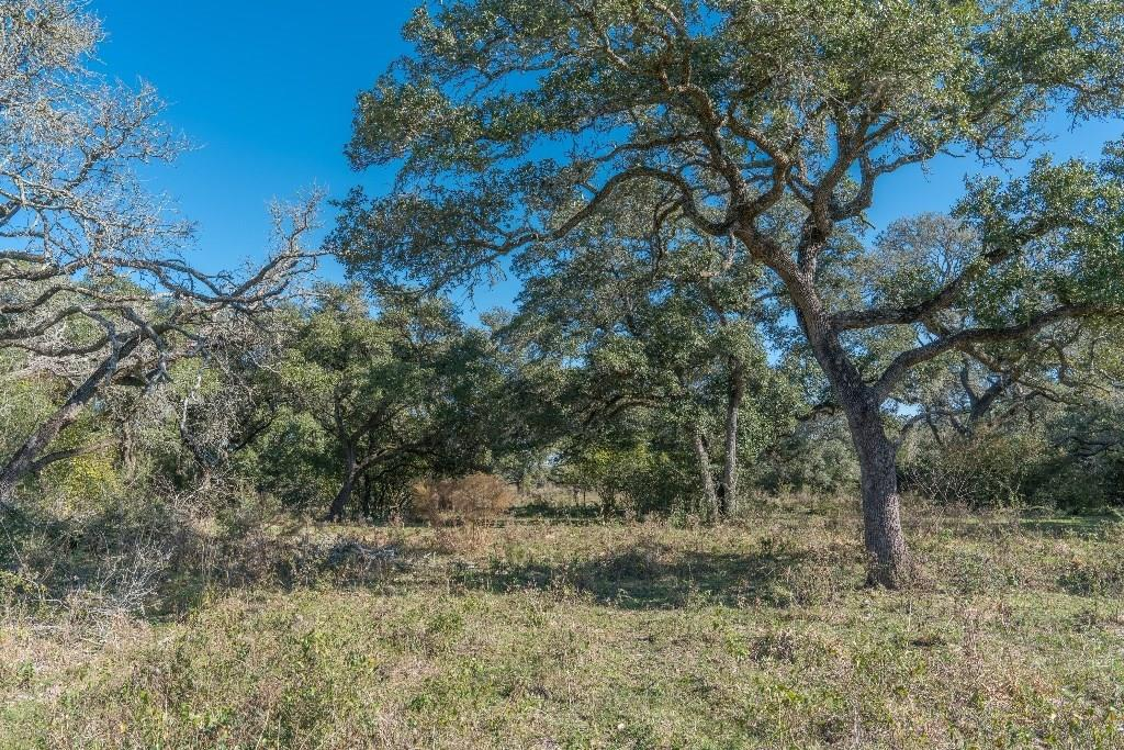 TBD County Road 105, Columbus, TX 78934 - Columbus, TX real estate listing