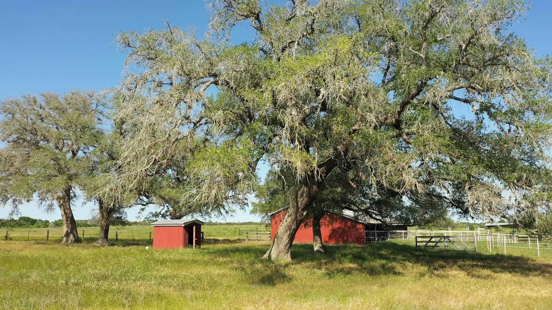 602 FM 609 North Property Photo - Flatonia, TX real estate listing