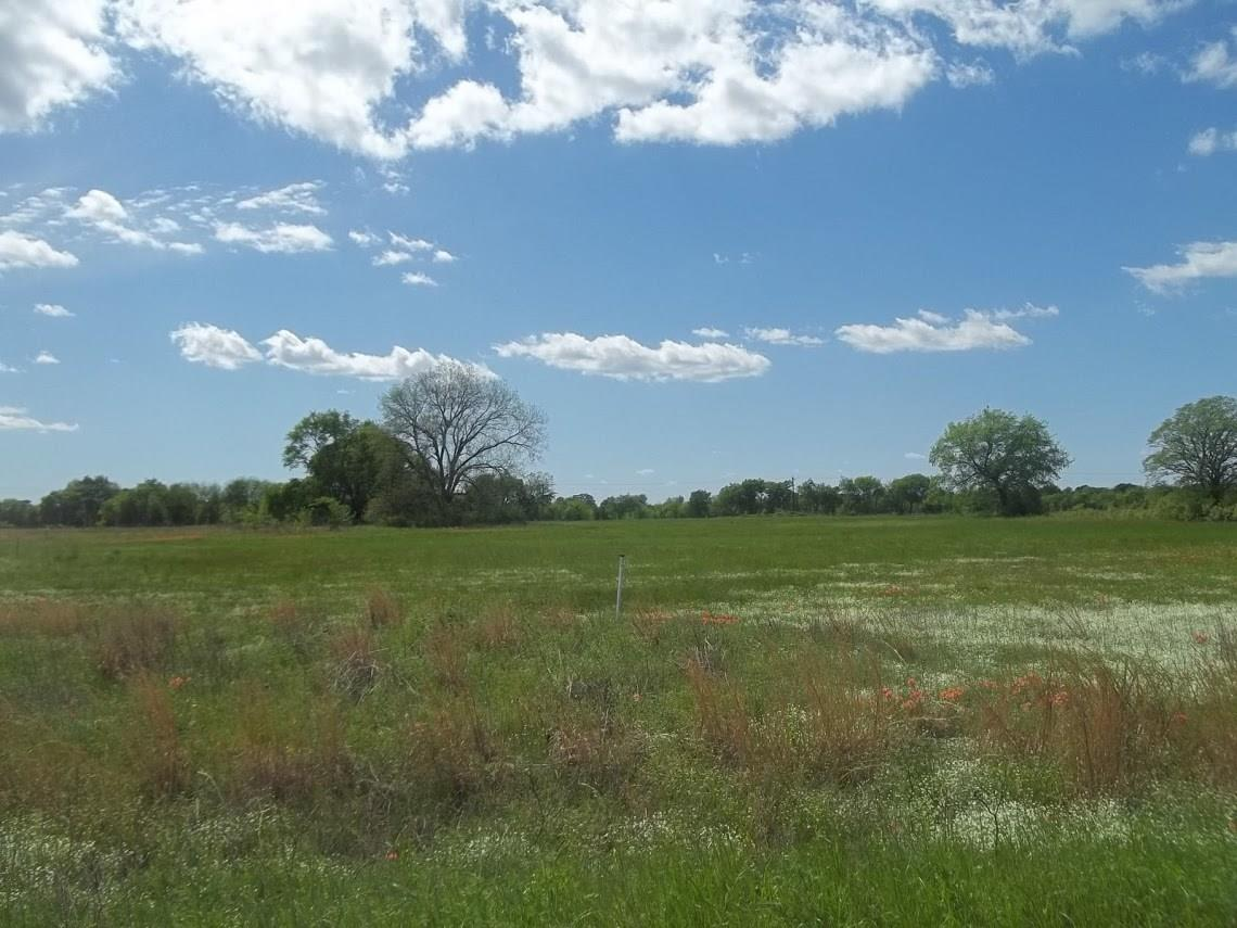 0 Fox Hollow Road Property Photo - Lone Oak, TX real estate listing