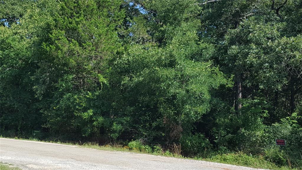 000 Commanche Dr, Smithville, TX 78957 - Smithville, TX real estate listing