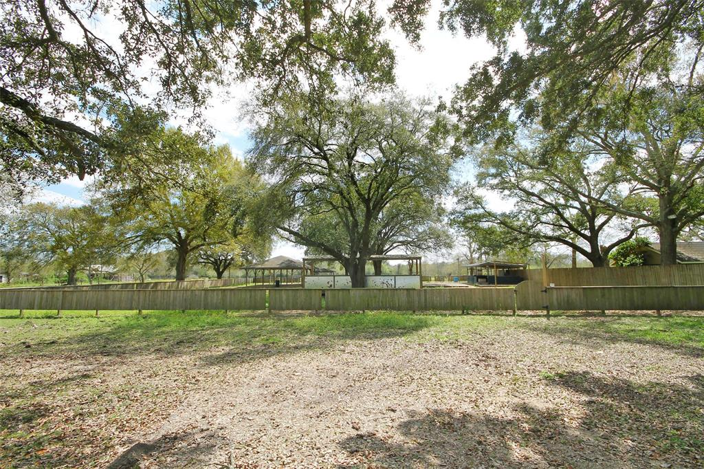 716 Palmetto Street Property Photo - Fresno, TX real estate listing