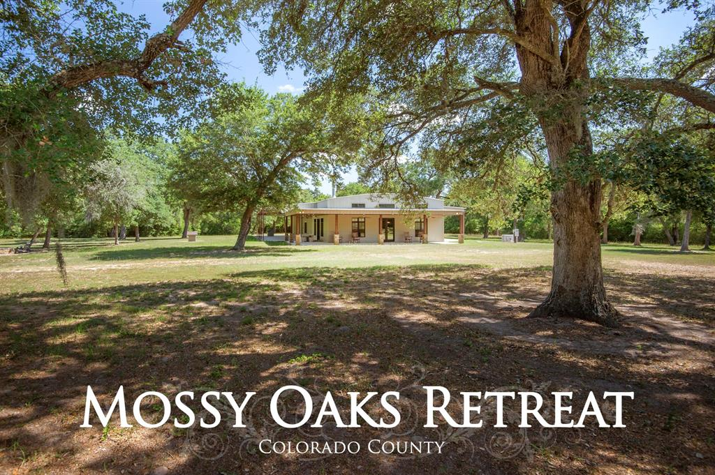 1069 Mossy Oaks Lane Lane, New Ulm, TX 78950 - New Ulm, TX real estate listing