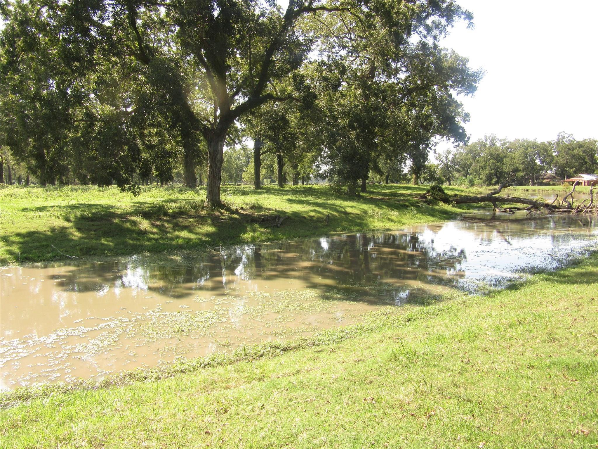 2514 Fm 640 Property Photo - Wharton, TX real estate listing