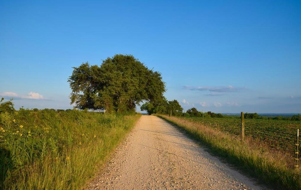 457 Branch Road Property Photo - Geronimo, TX real estate listing