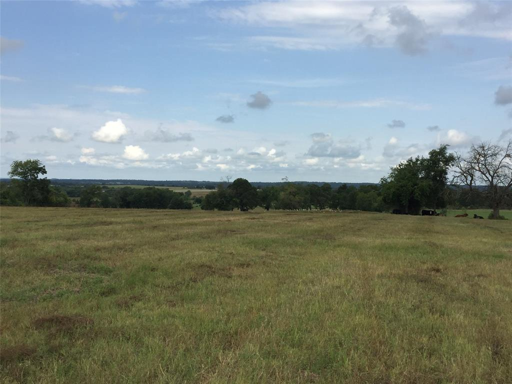 4581 County Road 222, Anderson, TX 77830 - Anderson, TX real estate listing