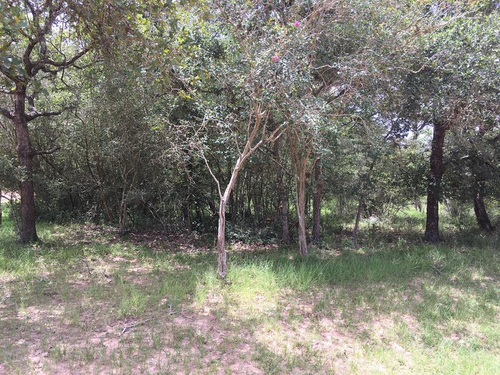 0 Crooked Creek Drive Property Photo - Sheridan, TX real estate listing