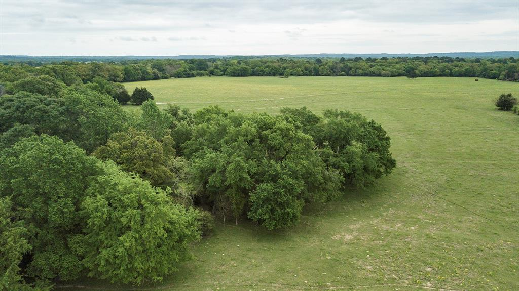 TBD An County Road 431, Montalba, TX 75853 - Montalba, TX real estate listing
