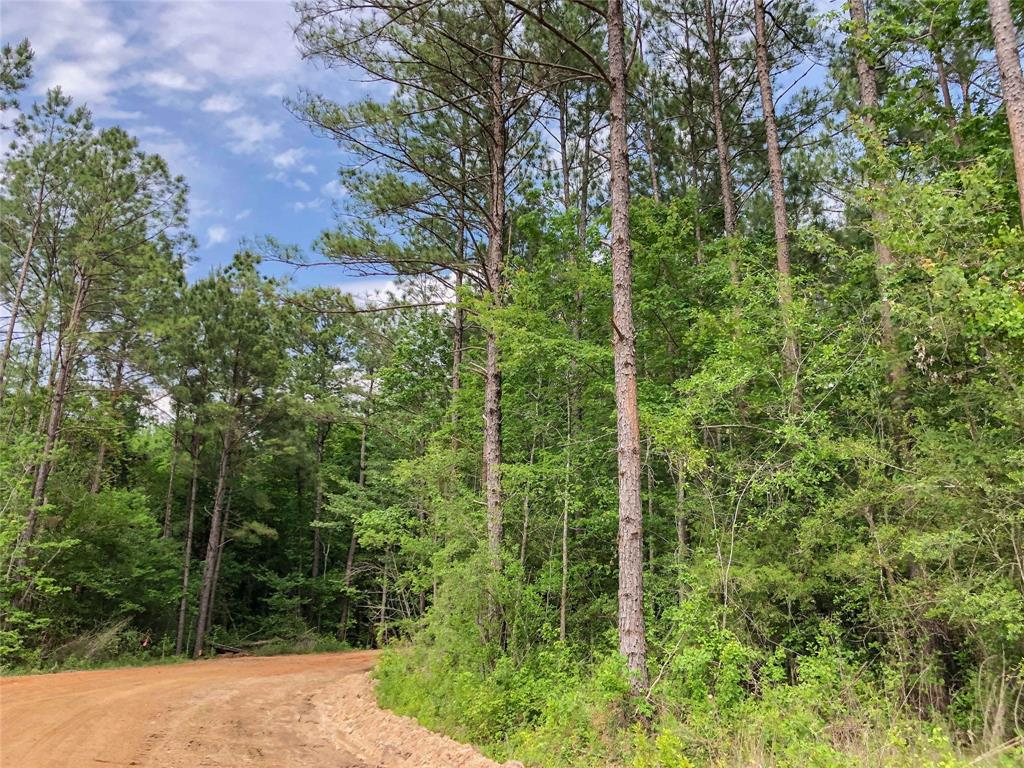 000 Highway 69 Property Photo - Warren, TX real estate listing