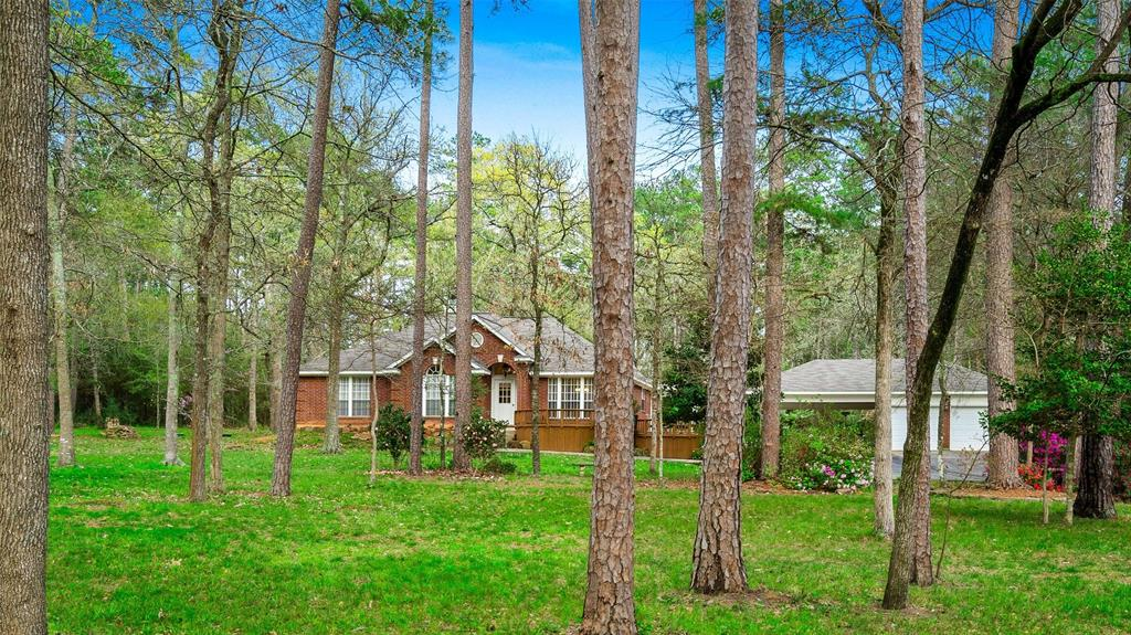 22385 Magnolia Hills Drive Property Photo - Magnolia, TX real estate listing