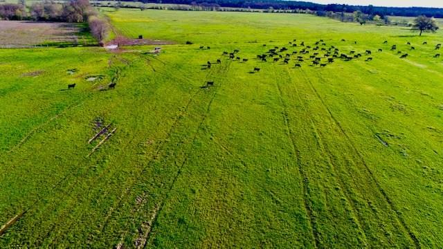 TBD State Highway 21, Crockett, TX 75835 - Crockett, TX real estate listing