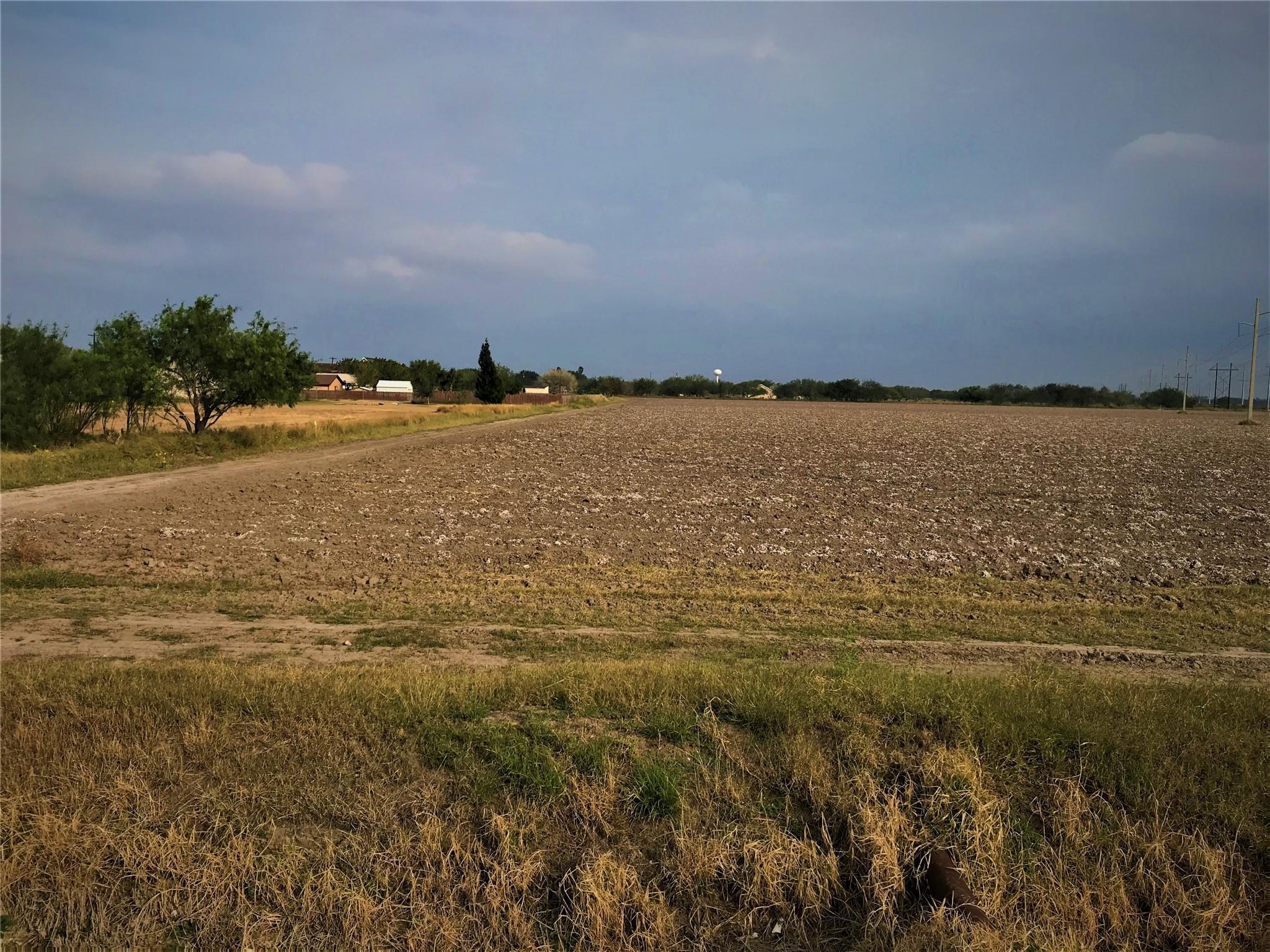 000 TAMM Lane Property Photo - Harlingen, TX real estate listing
