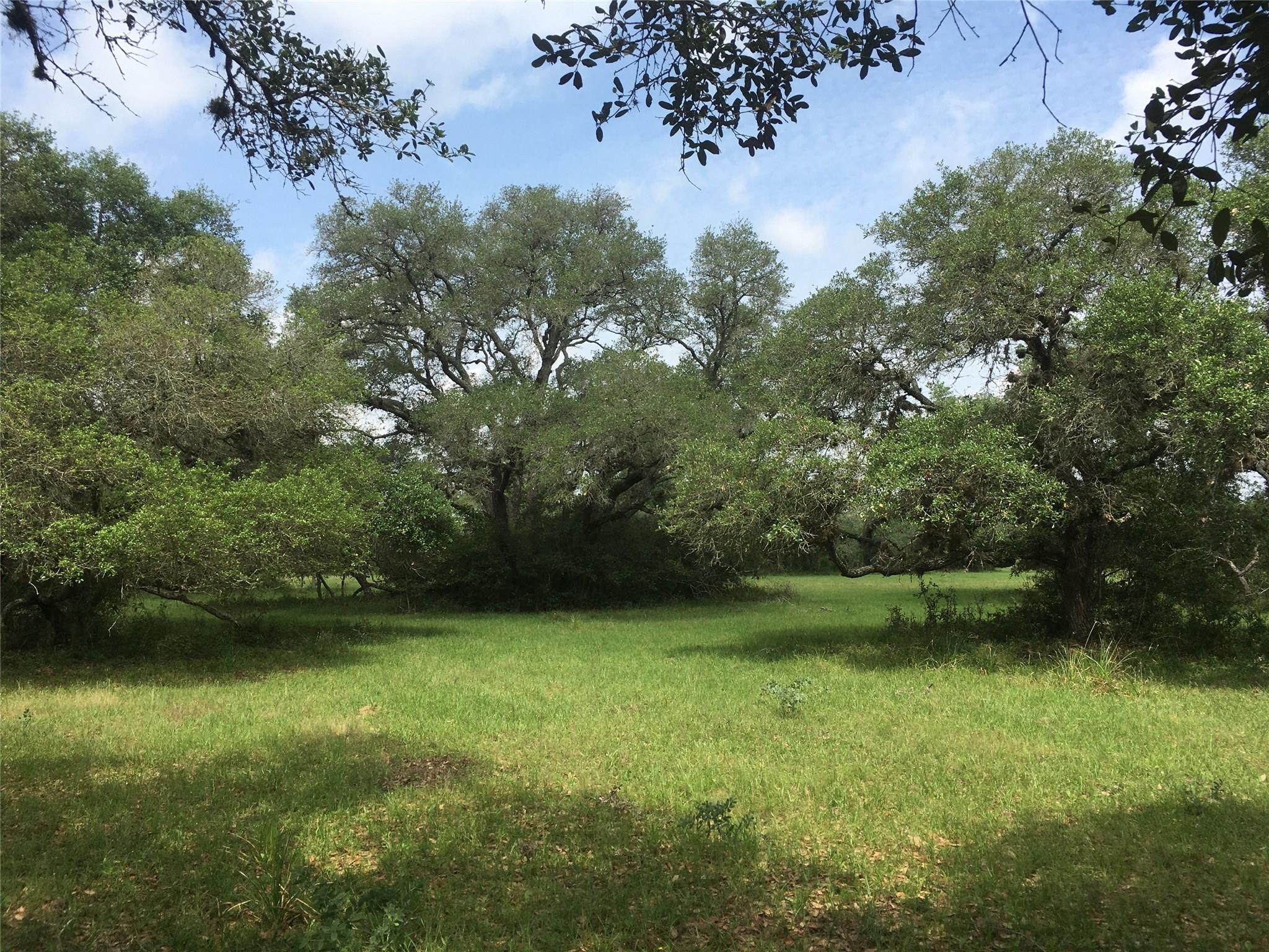 7-1 Jessica's Way Property Photo - Altair, TX real estate listing