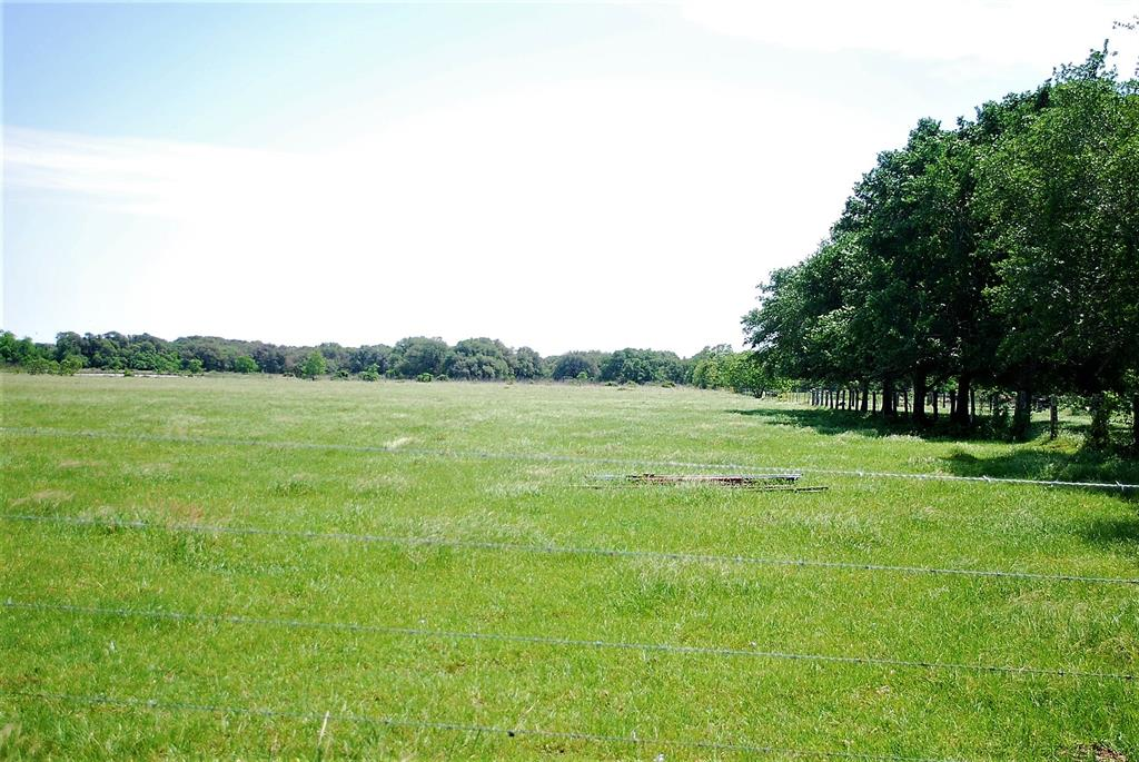 0 CR 162 Property Photo - Rock Island, TX real estate listing